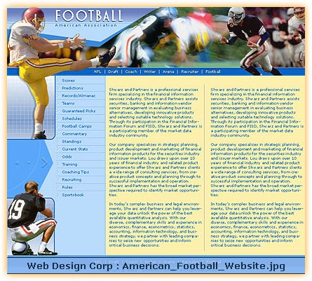 best american football websites